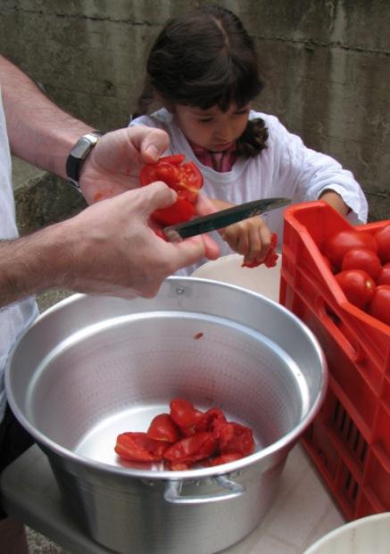Pomodori 2007
