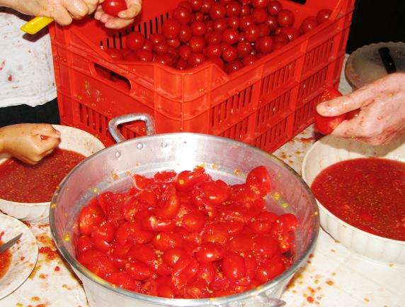 Pomodori 3 2007