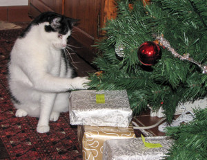09.12.25-Christmas-0294