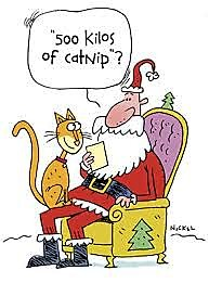 funny cat Xmas cartoon